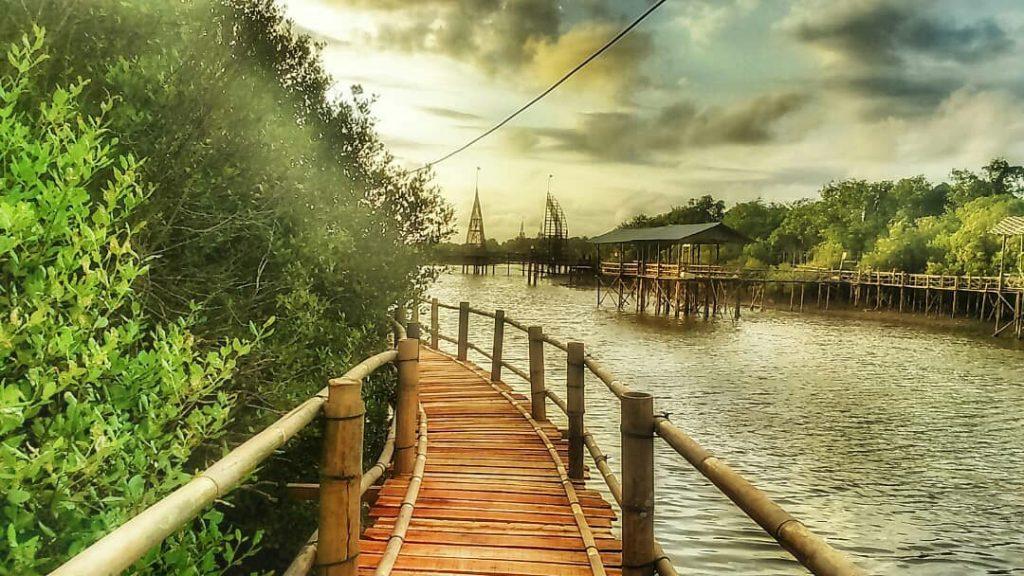 wisata mangrove jogja