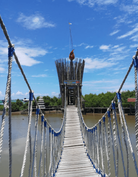 jembatan hutan mangrove jogja