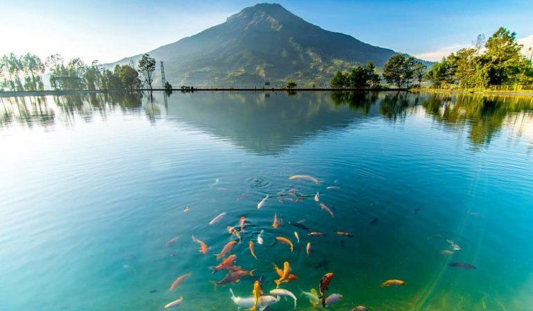 Temanggung, Diapit Gunung – Wisata Alam & Sejarah